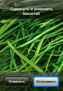 Postavit-oboi-iPhone