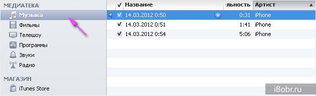 iTunes_voice_2