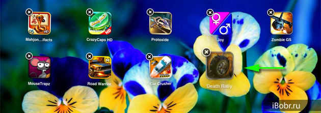 Papka_iPad_1