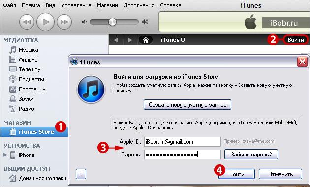iTunes_Store