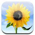 Photo_App