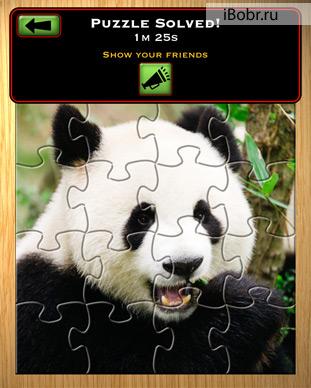 J-Puzzle-2