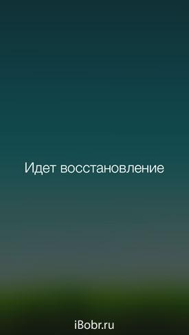 Vost_1