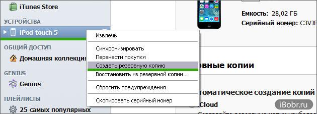 iPod-Backup