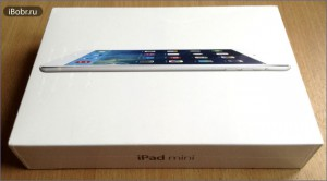 iPad-mini-box