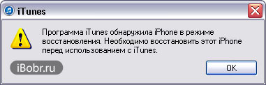iPhone-vost